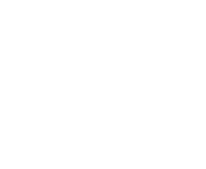Custom Project logo